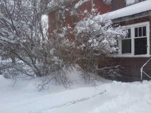 my mom's house in winter