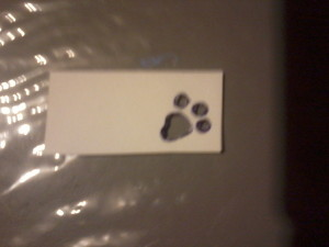 image of stencil of cat pawprint, which I used in the collage