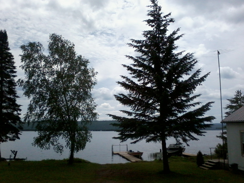 2 trees and dock with lake and nice sky
