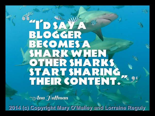 This is a picture of a some sharks with Ana Hoffman's quote superimposed on top of it.