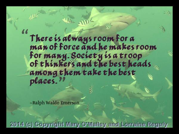 This is a picture of a some sharks with one of Ralph Waldo Emerson's quotes superimposed on top of it.