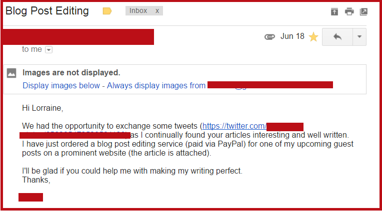 Email from a client who ordered my editing services