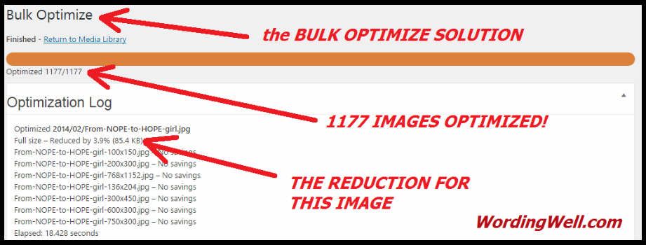 Proof of bulk reduction using EWWW Image Optimizer