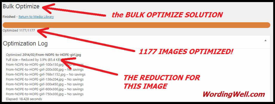 Proof of bulk reduction using EWWW Image Optimizer