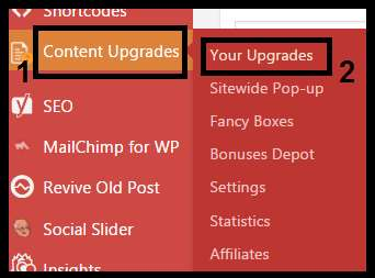 Where to find the Content Upgrades Pro plugin in your dashboard